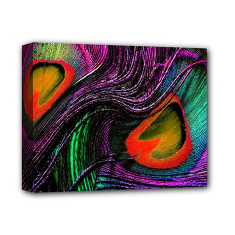 Peacock Feather Rainbow Deluxe Canvas 14  x 11