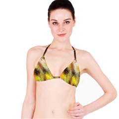 Multi Colored Seamless Abstract Background Bikini Top