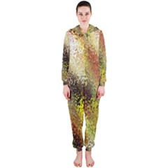 Multi Colored Seamless Abstract Background Hooded Jumpsuit (Ladies)