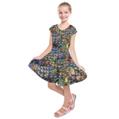 Multi Color Peacock Feathers Kids  Short Sleeve Dress