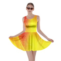 Realm Of Dreams Light Effect Abstract Background Skater Dress