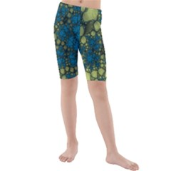 Holly Frame With Stone Fractal Background Kids  Mid Length Swim Shorts