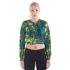 Holly Frame With Stone Fractal Background Women s Cropped Sweatshirt