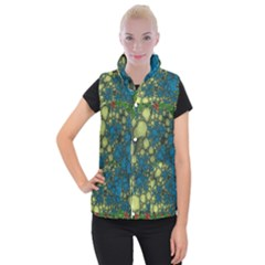 Holly Frame With Stone Fractal Background Women s Button Up Puffer Vest