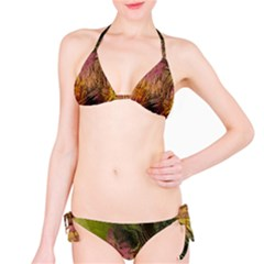 Abstract Brush Strokes In A Floral Pattern  Bikini Set