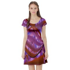 Passion Candy Sensual Abstract Short Sleeve Skater Dress