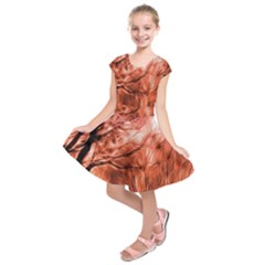 Fire In The Forest Artistic Reproduction Of A Forest Photo Kids  Short Sleeve Dress