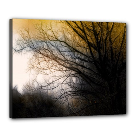 Tree Art Artistic Abstract Background Canvas 20  X 16