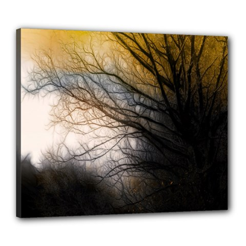 Tree Art Artistic Abstract Background Canvas 24  x 20