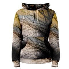 Tree Art Artistic Abstract Background Women s Pullover Hoodie