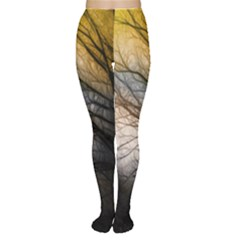 Tree Art Artistic Abstract Background Women s Tights