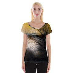 Tree Art Artistic Abstract Background Women s Cap Sleeve Top