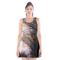 Tree Art Artistic Abstract Background Scoop Neck Skater Dress