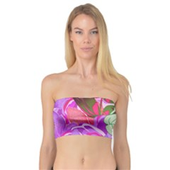 Abstract Design With Hummingbirds Bandeau Top