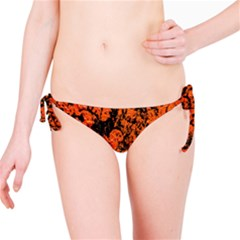 Abstract Orange Background Bikini Bottom