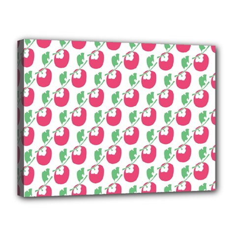 Fruit Pink Green Mangosteen Canvas 16  x 12