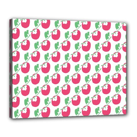Fruit Pink Green Mangosteen Canvas 20  x 16