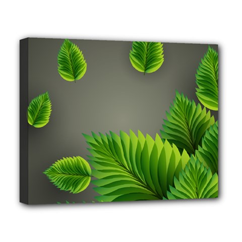 Leaf Green Grey Deluxe Canvas 20  x 16