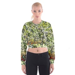 Chaos Background Other Abstract And Chaotic Patterns Women s Cropped Sweatshirt