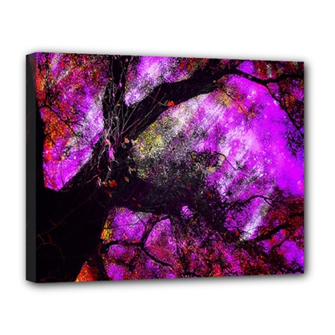 Pink Abstract Tree Canvas 14  x 11