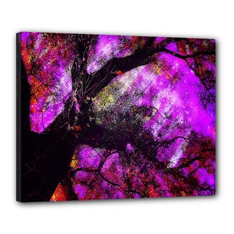 Pink Abstract Tree Canvas 20  X 16