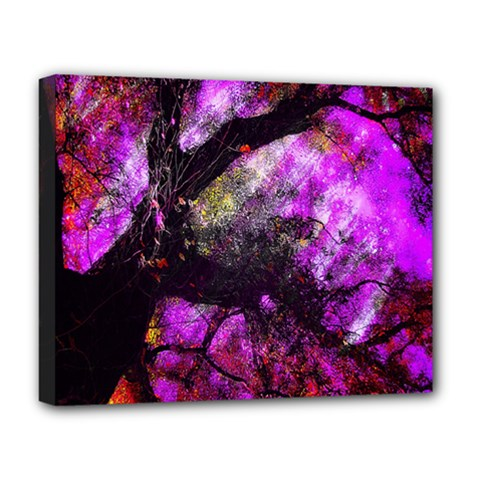 Pink Abstract Tree Deluxe Canvas 20  x 16