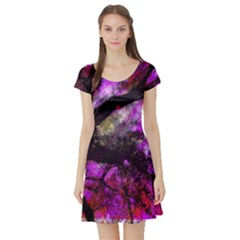 Pink Abstract Tree Short Sleeve Skater Dress