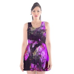 Pink Abstract Tree Scoop Neck Skater Dress