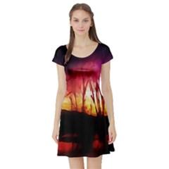 Fall Forest Background Short Sleeve Skater Dress
