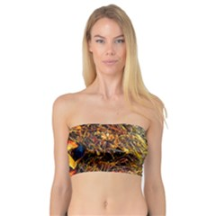 Abstract In Orange Sealife Background Abstract Of Ocean Beach Seaweed And Sand With A White Feather Bandeau Top