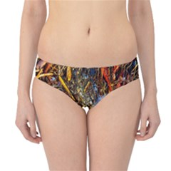 Abstract In Orange Sealife Background Abstract Of Ocean Beach Seaweed And Sand With A White Feather Hipster Bikini Bottoms