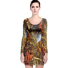 Abstract In Orange Sealife Background Abstract Of Ocean Beach Seaweed And Sand With A White Feather Long Sleeve Velvet Bodycon Dress