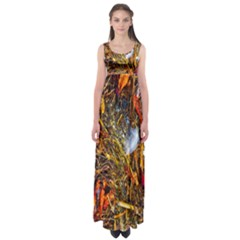 Abstract In Orange Sealife Background Abstract Of Ocean Beach Seaweed And Sand With A White Feather Empire Waist Maxi Dress