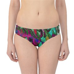 Bright Tropical Background Abstract Background That Has The Shape And Colors Of The Tropics Hipster Bikini Bottoms