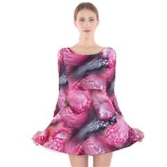 Raspberry Delight Long Sleeve Velvet Skater Dress