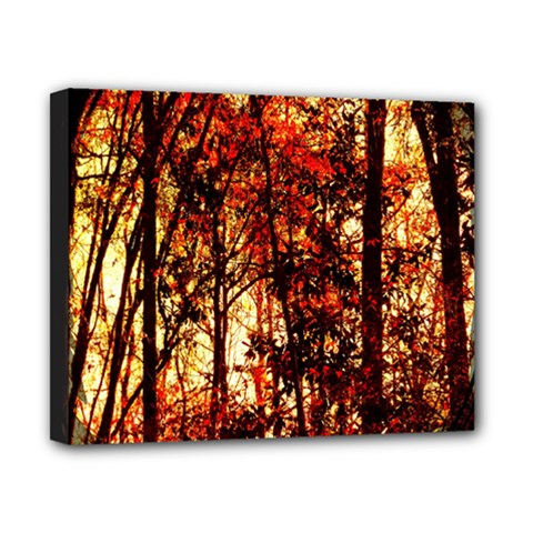 Forest Trees Abstract Canvas 10  x 8