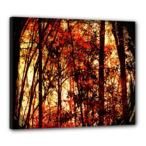Forest Trees Abstract Canvas 24  X 20