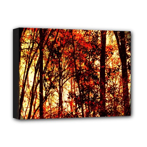 Forest Trees Abstract Deluxe Canvas 16  x 12