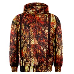 Forest Trees Abstract Men s Pullover Hoodie
