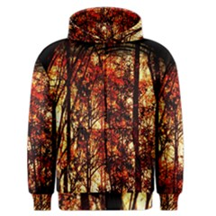 Forest Trees Abstract Men s Zipper Hoodie