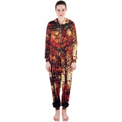 Forest Trees Abstract Hooded Jumpsuit (ladies)
