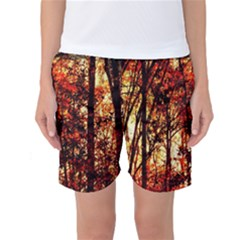 Forest Trees Abstract Women s Basketball Shorts