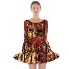 Forest Trees Abstract Long Sleeve Skater Dress