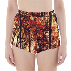 Forest Trees Abstract High Waisted Bikini Bottoms