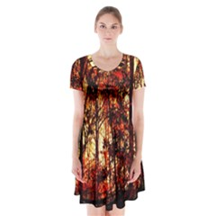 Forest Trees Abstract Short Sleeve V-neck Flare Dress