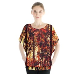 Forest Trees Abstract Blouse