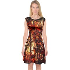 Forest Trees Abstract Capsleeve Midi Dress