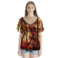 Forest Trees Abstract Flutter Sleeve Top