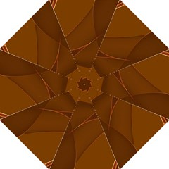 Brown Background Waves Abstract Brown Ribbon Swirling Shapes Folding Umbrellas