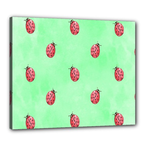 Pretty Background With A Ladybird Image Canvas 24  x 20